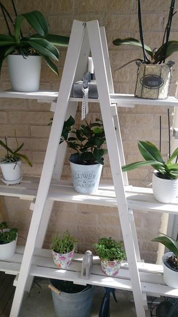 odlingshylla-balkong-orkideer