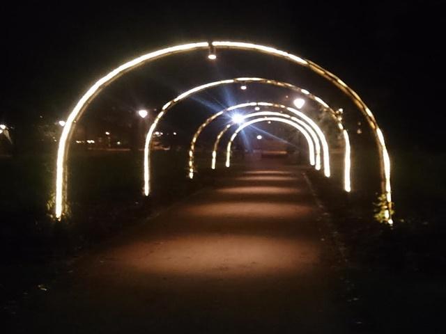 ljus upspala stadsträdgården