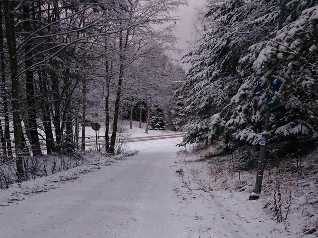 vinter jul