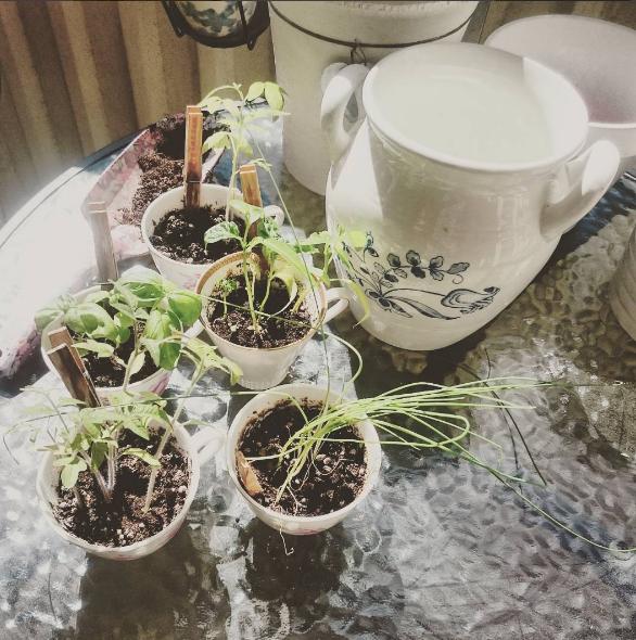 plantering_balkong
